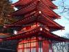 chureito-pagoda-5