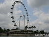 singapore-ducktours-26
