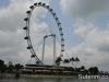 singapore-ducktours-26