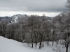 snow-monsters-at-mountain-zao-yamagata-14