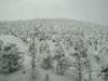 snow-monsters-at-mountain-zao-yamagata-4