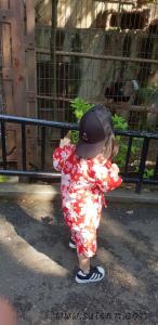 สวนสัตว์ Ueno